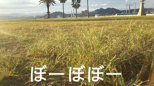PicsArt_1380191110593.jpg